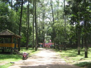 Wisata Punti Kayu berada kurang lebih 7 km dari pusat kota Palembang