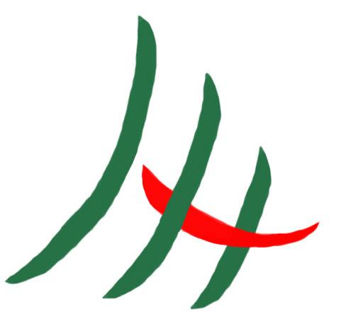 Logo RSMH Palembang
