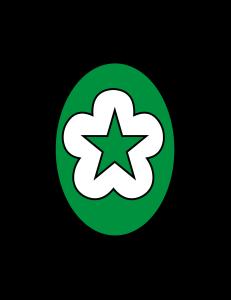 LOGO-STIK-BINA-HUSADA-PALEMBANG