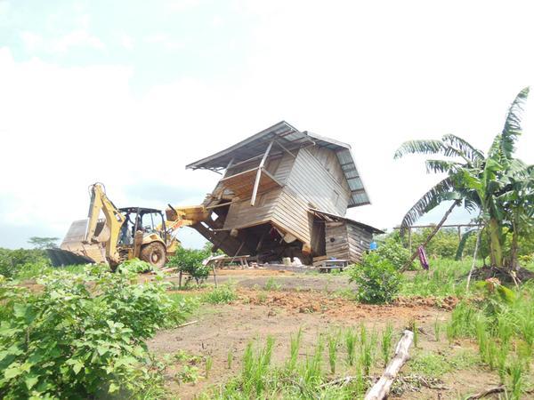 70-tahun-indonesia-merdeka-masyarakat-adat-harus-merdeka-juga-httpt-cokm6skkfbb6-palembangtweet-infopalembang-httpt-coip5jbq17jt