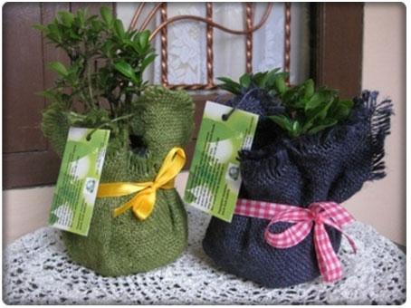 souvenir pernikahan tempat tissue