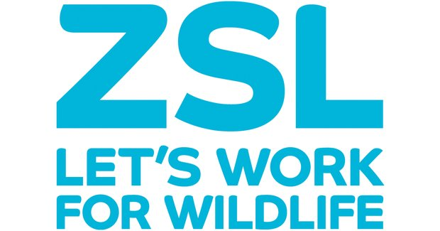 zsl-indonesia-job-vacancy-multi-stakeholder-forum-assistant-palembang-httpst-conzy4bqyrbw-httpst-coyig5sgqrmo-cc-infopalembang