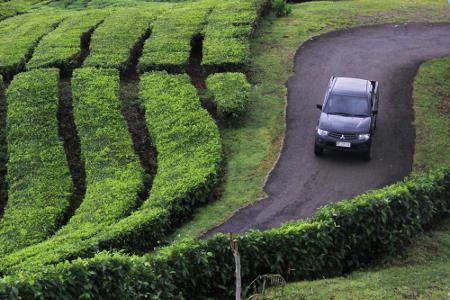 5-_memasuki_akhir_pekan_kawasan_puncak_pagaralam_selalu_ramai_dikunjungi_wisatawan_baik_dari_palembang_maupun_luar_palembang_